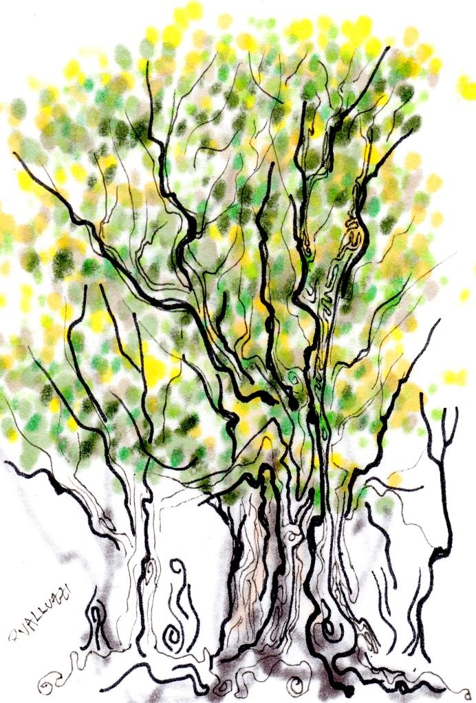 tiny treeish notions